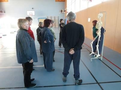 Prise de conscience par le mouvement par la méthode Feldenkrais, atelier à Guéret